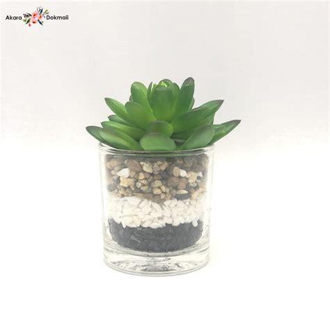 กุหลาบหินปลอม Echeveria plant แต่งด้วยหิน3สี3ชั้น พร้อมแก้ว สำหรับวางประดับตกแต่ง