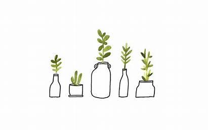Desktop Imac Plant Computer Plants Backgrounds Macbook