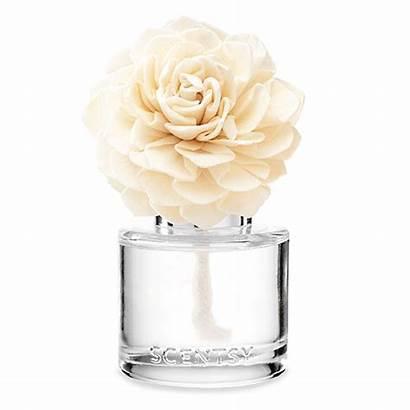 Scentsy Luna Flower Fragrance Wickfreecandles
