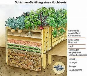 Hochbeet Befüllen Rindenmulch : index of natur ldw perma d index d ~ A.2002-acura-tl-radio.info Haus und Dekorationen