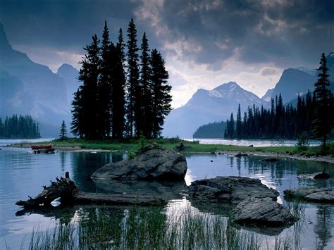 Cheap Christmas Trees Vancouver Wa by Best Attractions In Canada Top Attractions In Canada