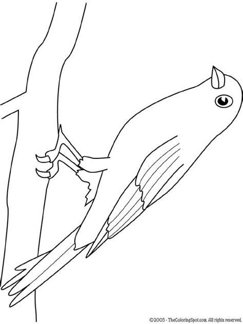 Kleurplaat Mees by Kleurplaat Vogels Middenbouw Creatief Craft