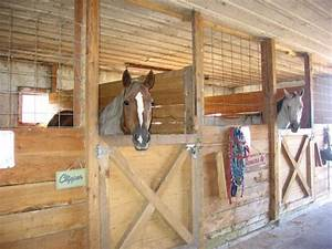 Horse stall ideas | House Interior - Half Doors ...