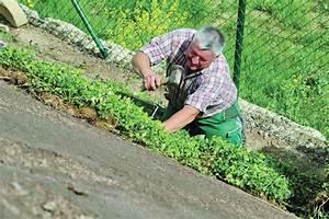 Hang Bepflanzen Bodendecker : bodendecker unterhaltplus ~ Sanjose-hotels-ca.com Haus und Dekorationen
