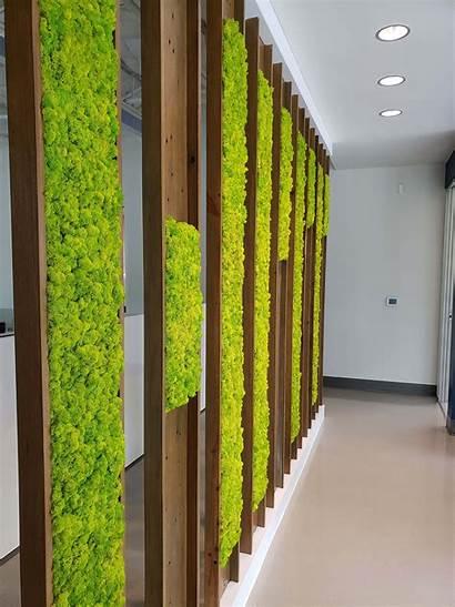 Wall Moss Engineering Office Decor Indoor Pillars
