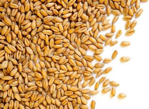 Kitchen Ideas Small Spaces - what are wheat berries and what can i do with them