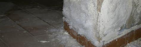 traitement des murs humides wikilia fr