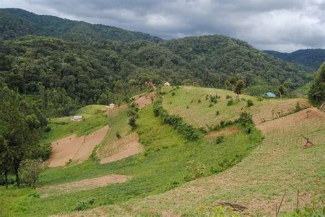 Land Grabbing Worsens Climate Change | Pulitzer Center