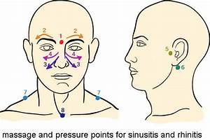 Pressure Points  U2013 Sinus