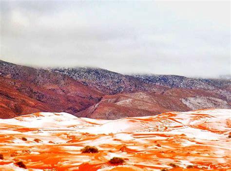 sahara desert covered   inches  snow  freak