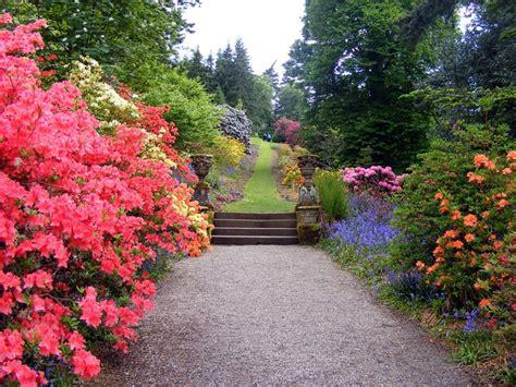 Backyard Garden Florist by Backyard Flower Gardens Your Neighbors Will Envy