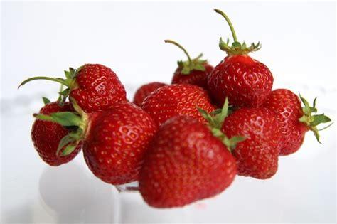 Ražos veselīgus saldumus no ogām un sulām :: cukursaldi.lv