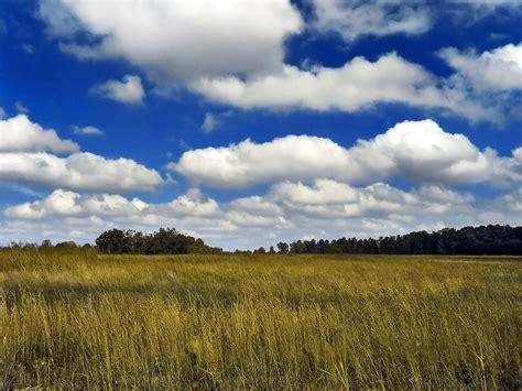 cloud definition cumulus cloud