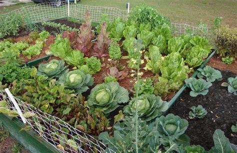 the vegetable garden ideas for your gardening inspiration