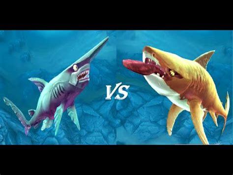 Tiger Shark Attacks Hammerhead