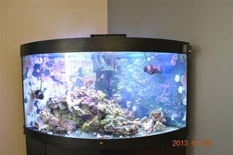 aquarium eau de mer 500 litres