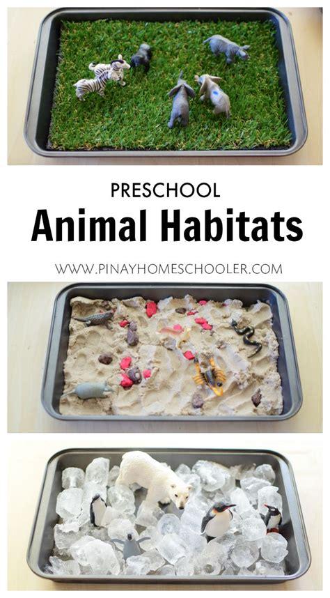 25 best ideas about habitats on animal 310   b1f18a664a1b3799a22042f6b8cce1a1