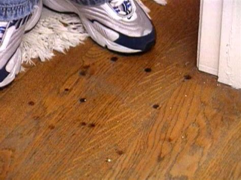 remove burn marks   hardwood floor hgtv