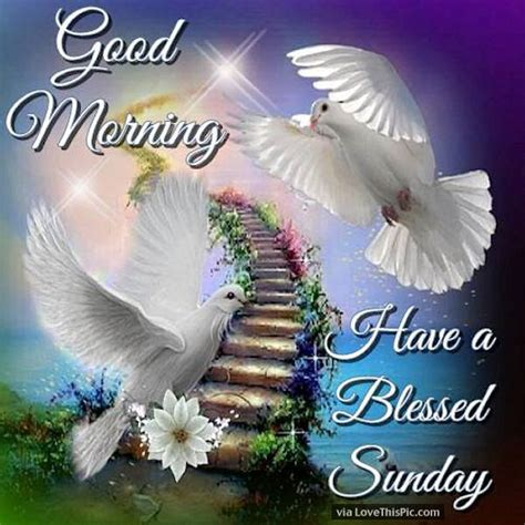 Blessed Sunday Morning Images Morning A Blessed Sunday Beautiful Quote