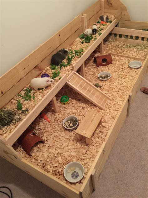 indoor guinea pig cage custom built   girls cage