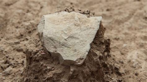scientists discovered oldest known tools in kenya