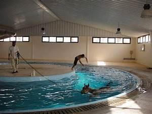 Pool 3 66 X 1 22 : 90 best equine pool images on pinterest horses ~ Kayakingforconservation.com Haus und Dekorationen
