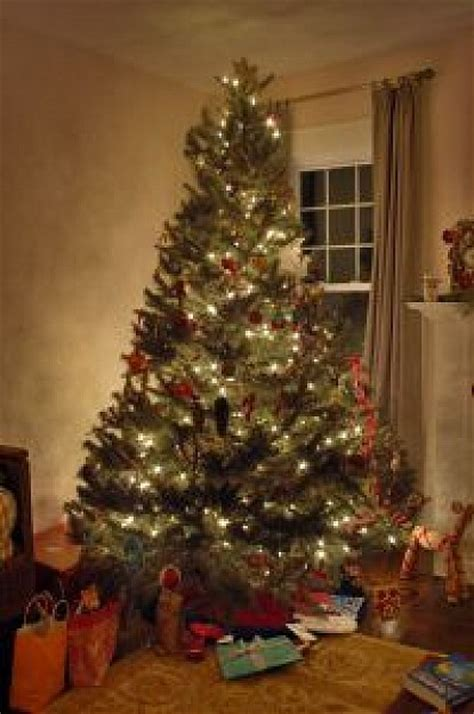 christmas tree inside house photo free download