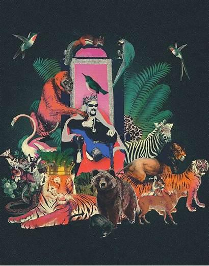 Exotic Joe Wild Gay Gone Tiger King