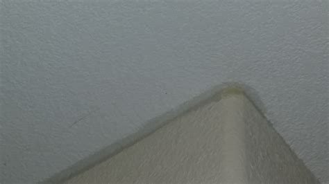 Hairline Cracks In Bathroom Ceiling by Cracks In Ceiling Throughout The House How Much