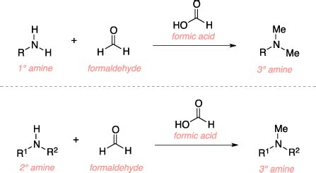 Protonated Amine by Eschweiler Clarke Reaction Name Reaction