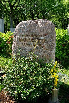 walther reyer wikipedia