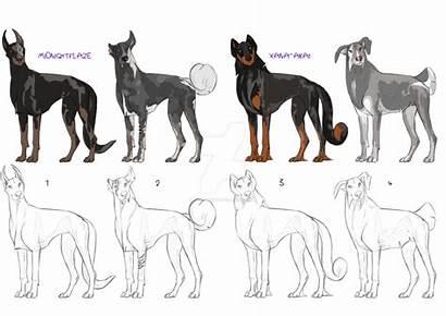 Creature Canine Adoption Deviantart Closed Animals