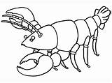 Lobster Coloring Pages Cartoon Printable Facts Getcoloringpages Sea sketch template
