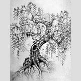 Anatomical Heart Tattoo Black And White | 675 x 900 jpeg 153kB
