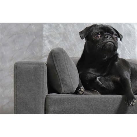 canapé chien canapé pour chien déhoussable original moderne