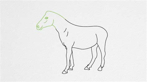 draw  horse step  step youtube