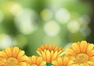 Background Scene With Yellow Flowers In Garden