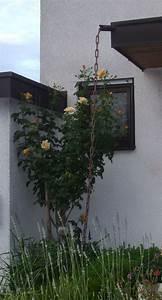 Welche Feile Für Welche Kette : regenablaufkette wikipedia ~ Orissabook.com Haus und Dekorationen