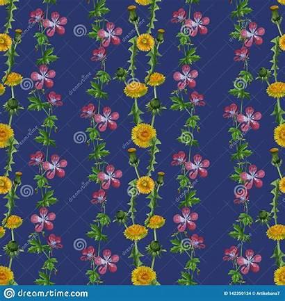 Watercolor Texture Seamless Dandelions Wildflowers Pattern Grass