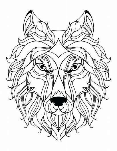 Coloring Wolf Face Printable Adult Wolves Simple