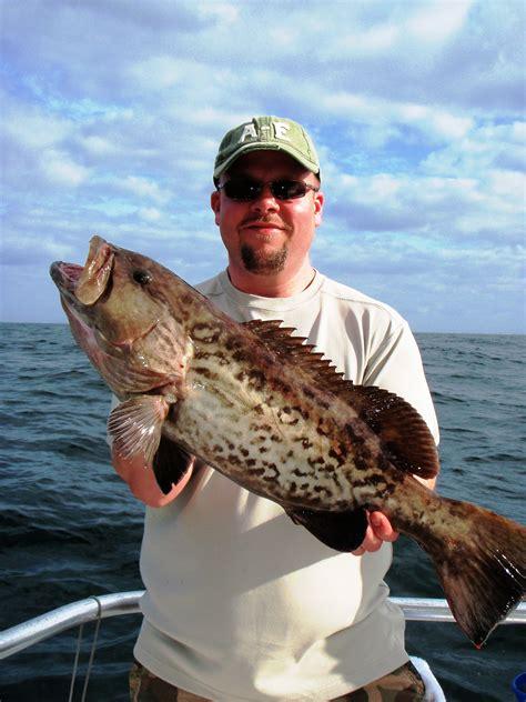 fishing grouper beach orange gulf sea deep alabama report fish dave gag shores april charters cannons charter