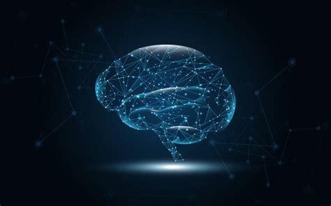 Digital Brain Wallpaper by Brain Vectors Photos And Psd Files Free