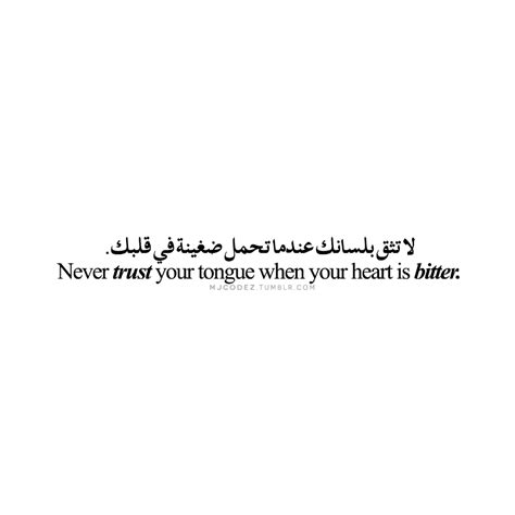 mjcodez  tumblrs source  arabic typography quotes