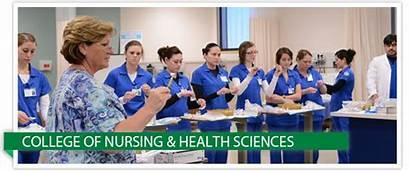 Nursing Health Sciences College Texas Tamucc Corpus