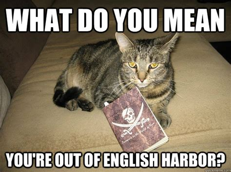 What Does Meme Mean In English - what do you mean you re out of english harbor passport cat quickmeme