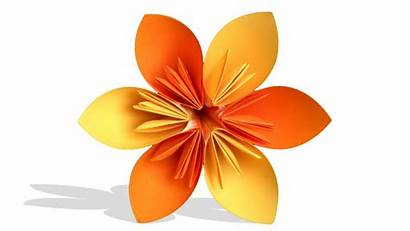Origami Flower 3d Easy Diy Learn