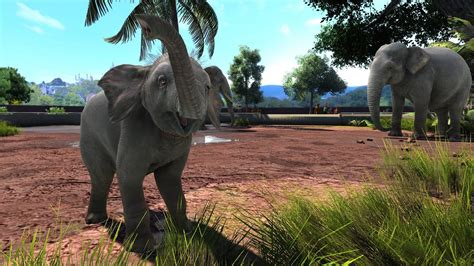 zoo tycoon ultimate animal collection steam key fuer pc