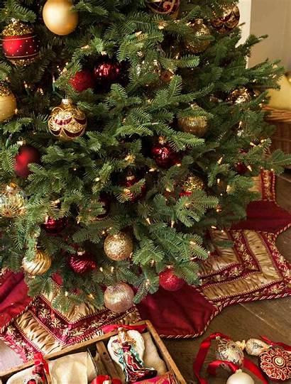 Christmas Balsam Tree Trees Decorating Hill Noel