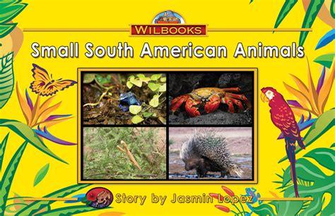 kindergarten non fiction wilbooks 157 | 3197