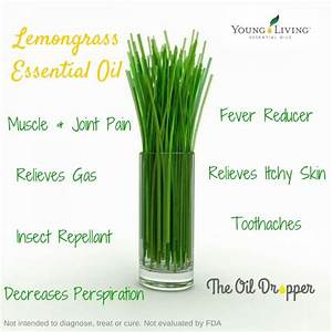 92 best Healing Oils images on Pinterest   Home remedies ...